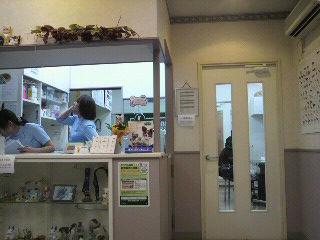すすきの動物病院.jpg
