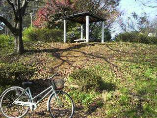 中村公園1.jpg