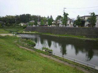 和泉川2.jpg