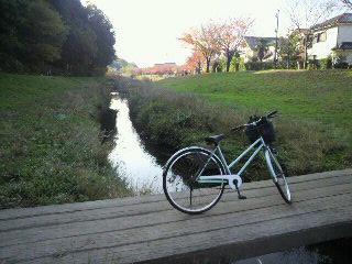 和泉川3.jpg