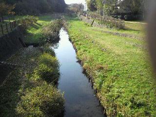 和泉川4.jpg