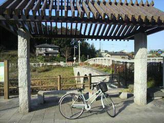 和泉川5.jpg