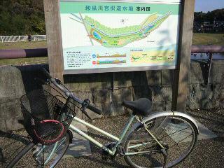 和泉川9.jpg